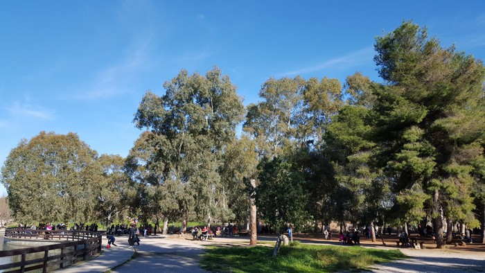 Πάρκο Τρίτση: Μια βόλτα που πρέπει να κάνετε | proorismoi.gr