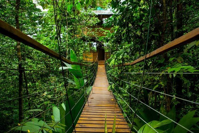 Αυτό το ξενοδοχείο στην Κόστα Ρίκα είναι κάτι που πρέπει να δείτε (6)